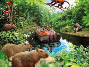 river-safari
